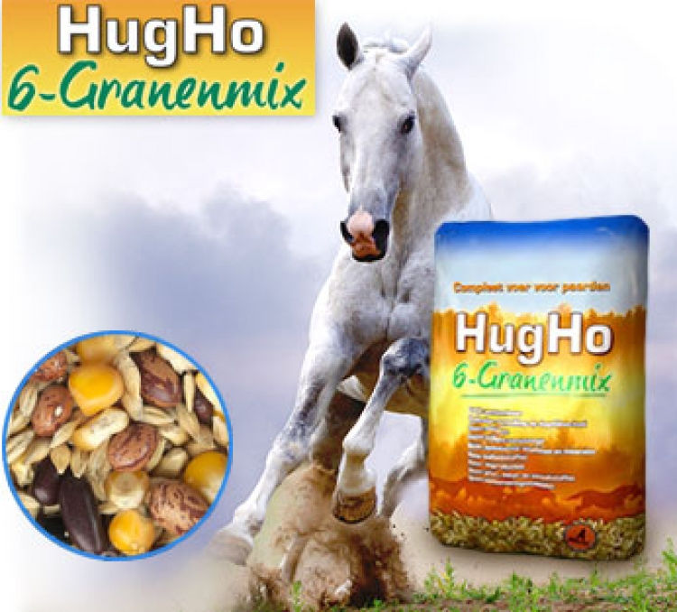 Hugho 6 granen mix