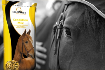 EquiFirst Paardenvoeding